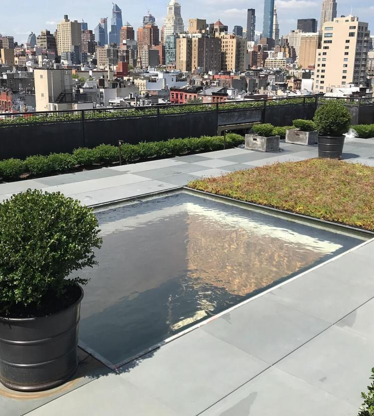 NYC commercial pond design