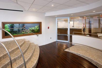 Cancer Center Freshwater Live Planted Aquarium