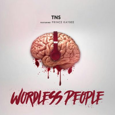 TNS ft. Prince Kaybee – Wordless People
