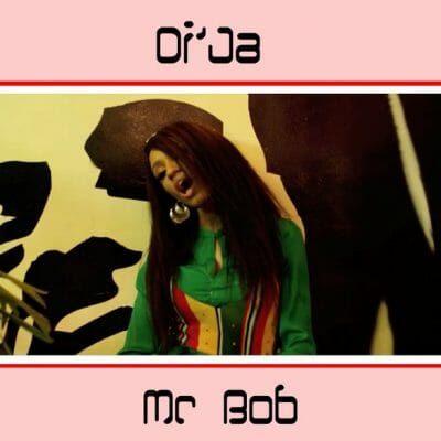 [Music + Video] Di'Ja – Mr Bob