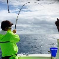 磯マグロ船釣り沖縄