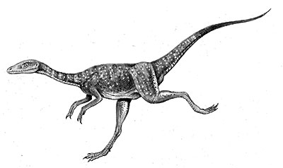 https://i2.wp.com/www.oknation.net/blog/home/blog_data/566/21566/images/dinosaur1/Compsognathus1.jpg
