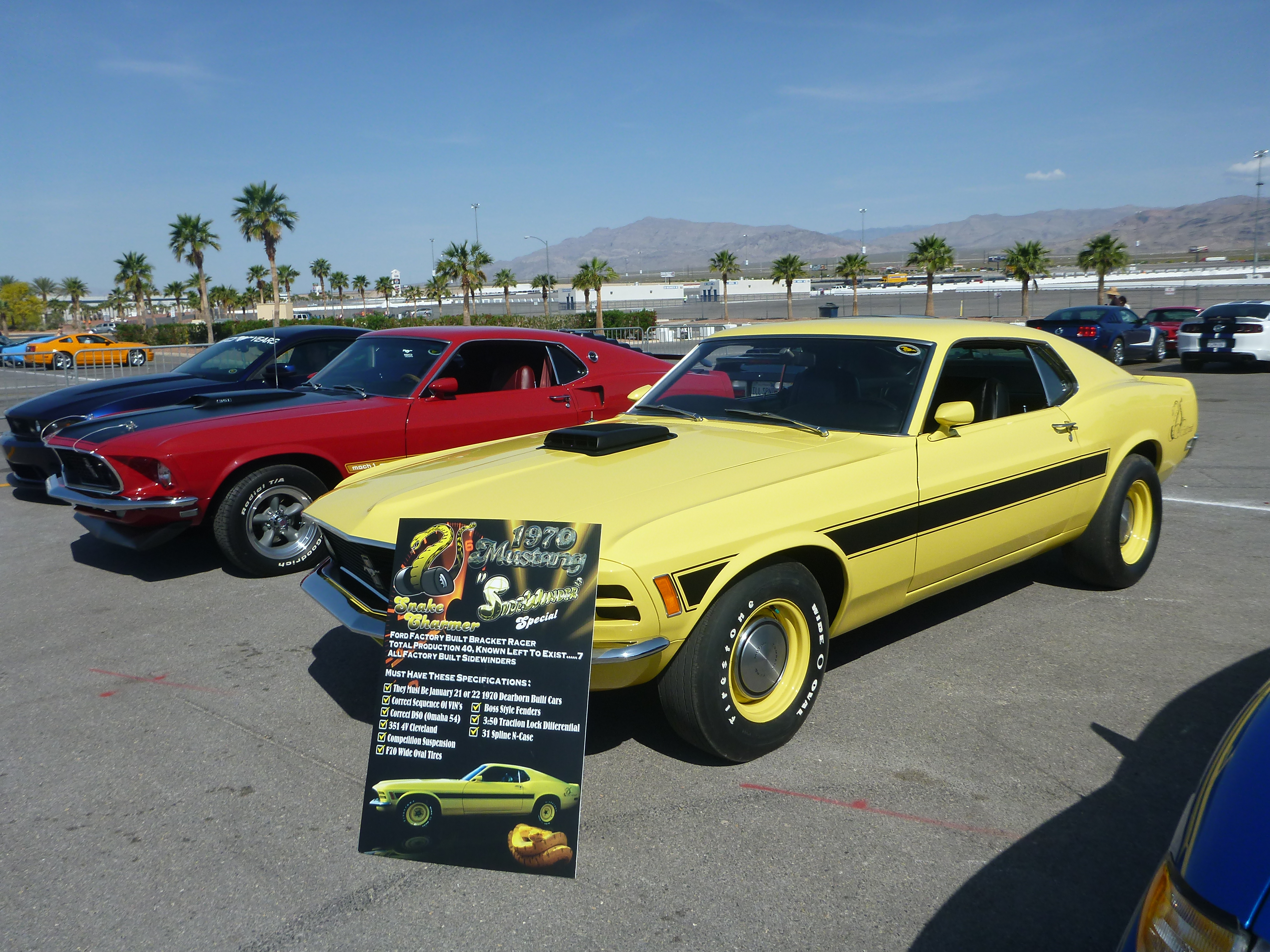 Mustang-50th-Las-Vegas-053