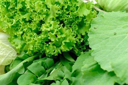 Vitamin K enostavno dobimo tudi z zelenjavo