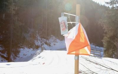 Master-Weltmeisterschaft Ski-OL 2020