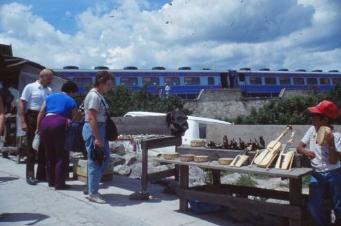 mex 044 Vue du train Chihuahua al Pacifico