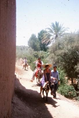 maroc 17