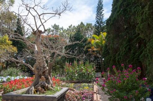 Jardin autour de la pagode Truc Lam