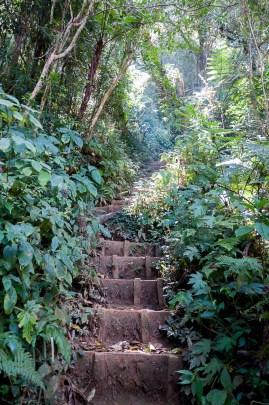 et des escaliers