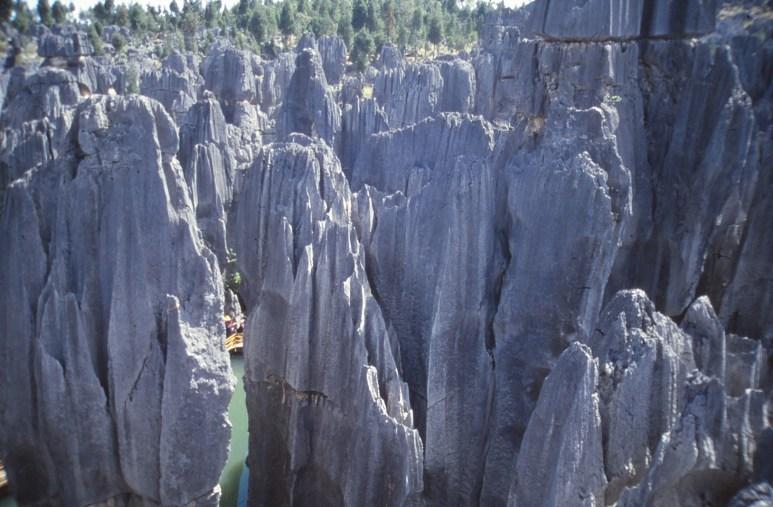 la forêt de pierre