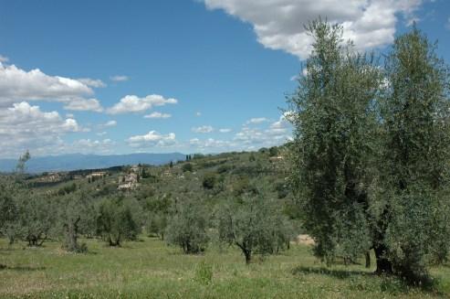 La Toscane, près de Florence