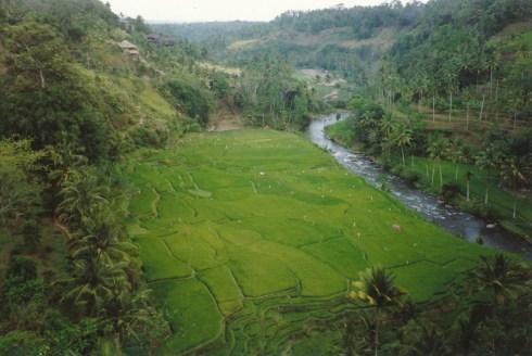 180 Bali 10