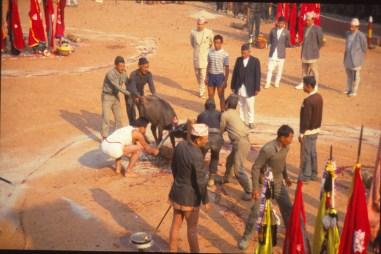 cérémonie à Shiva, Katmandou