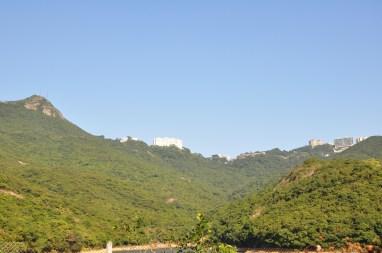 185 Sentier du peak vers cote sud 4