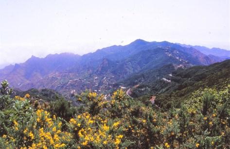 Nord ile Tenerife
