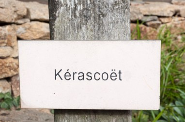 Kerascoet 10