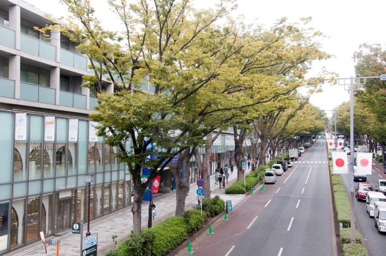 Tokyo Omotesando Dori