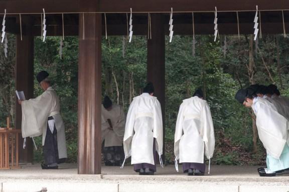 Tokyo Meiji Jingu; Procession des prêtres shinto