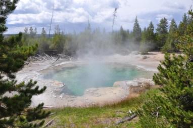 USA 625 Yellowstone