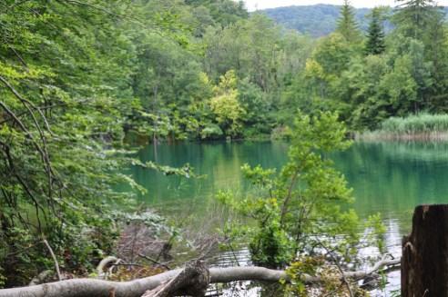Youg 975 lacs de Plitvice