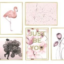 Livink - Flamingo - A3