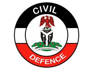 The Controller-General (CG)of the Nigeria Security and Civil Defence Corps (NSCDC), Ahmed Audi, has set up a committee of enquiry to investigate individuals or group of persons behind the 'fake' 2019/2021 replacement and recruitment supplementary list currently in circulation on social media.