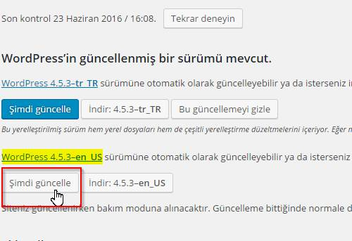 wordpress guncelleme