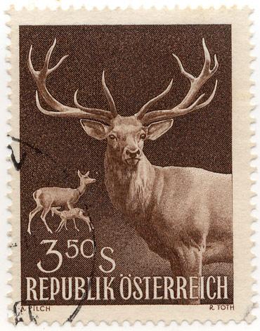 Austrian deer postage stamp