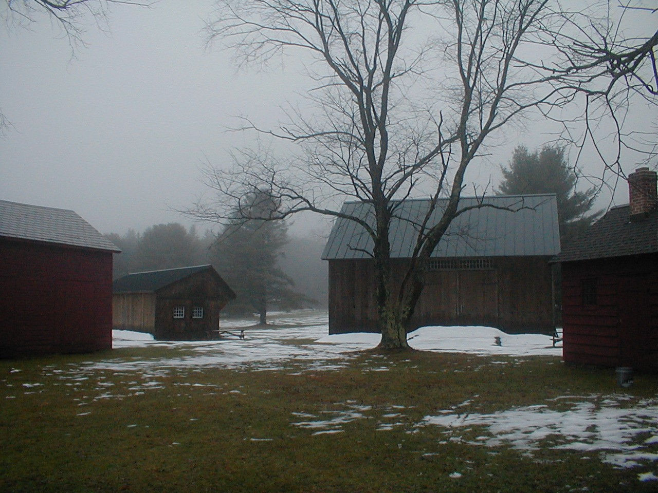 Barn&Shed in Fog