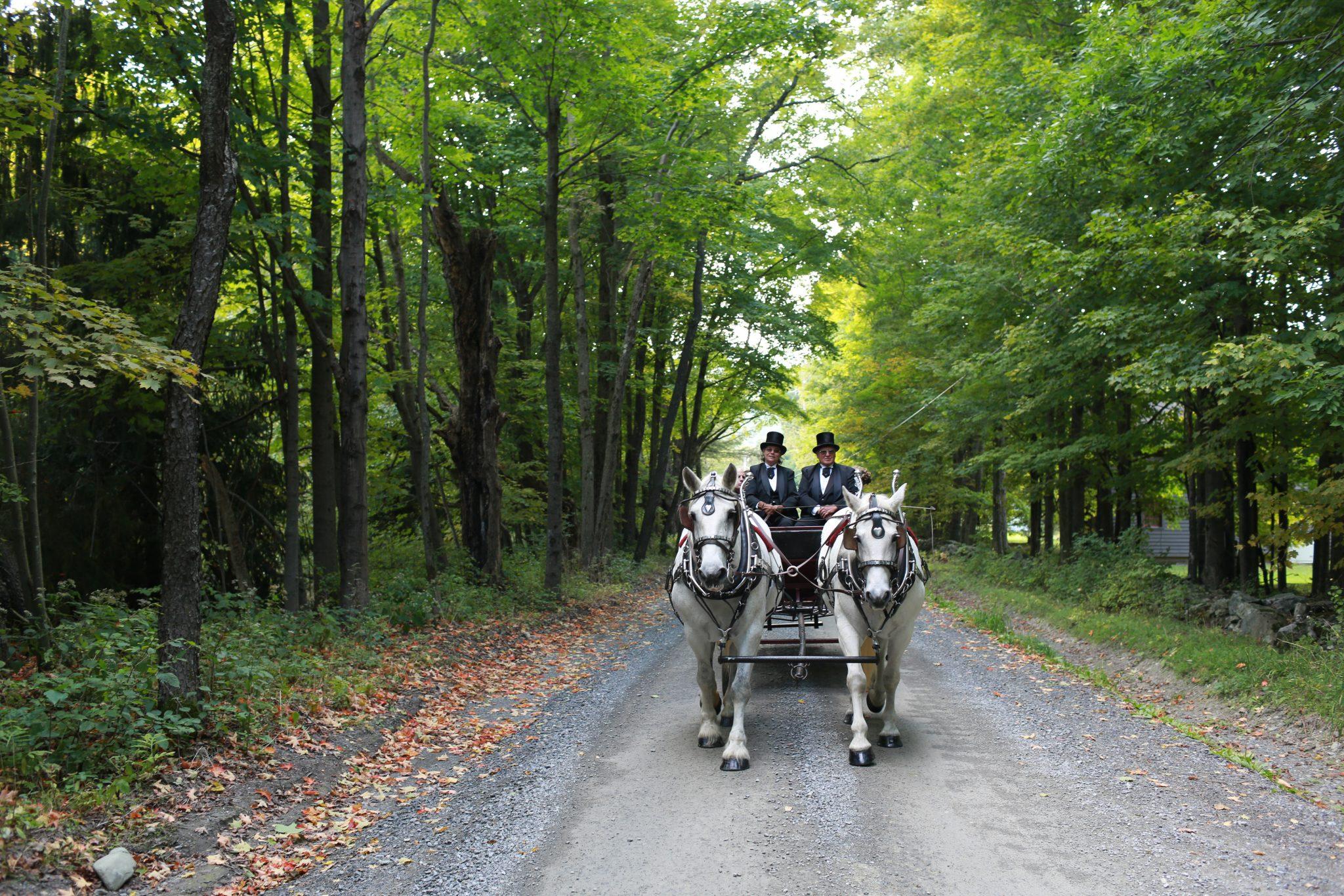 010_ba_carriage_ride