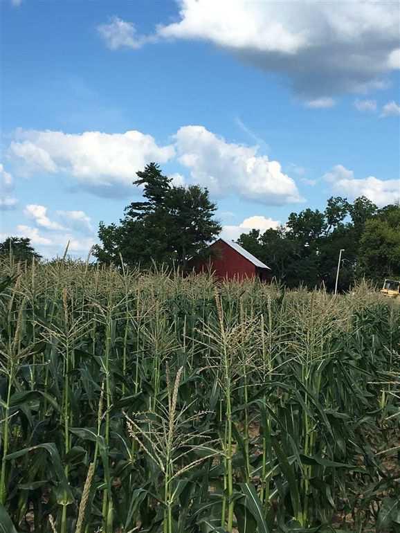 Indiana 1870 Italianate Farmhouse On 40 acres