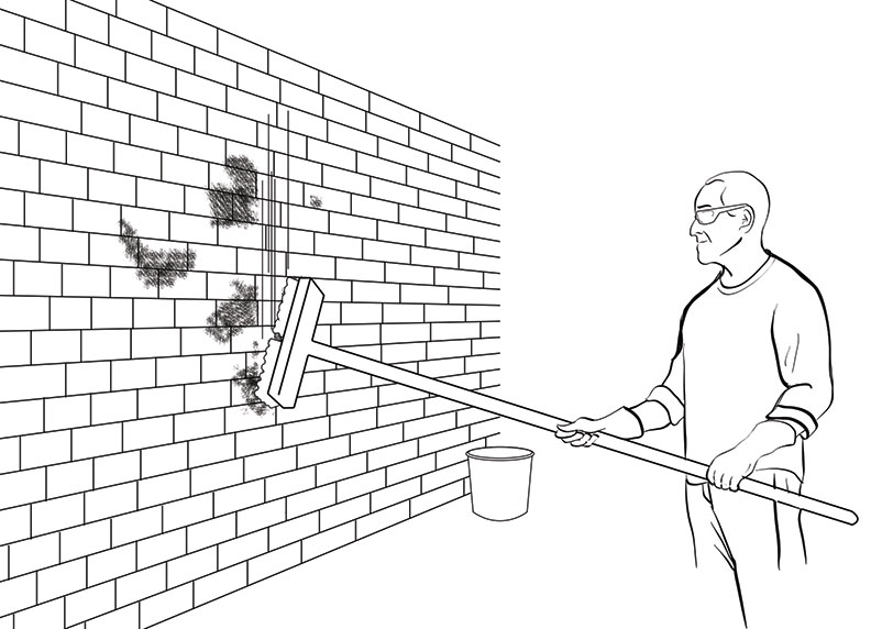 How To Clean Moss Off A Brick Wall