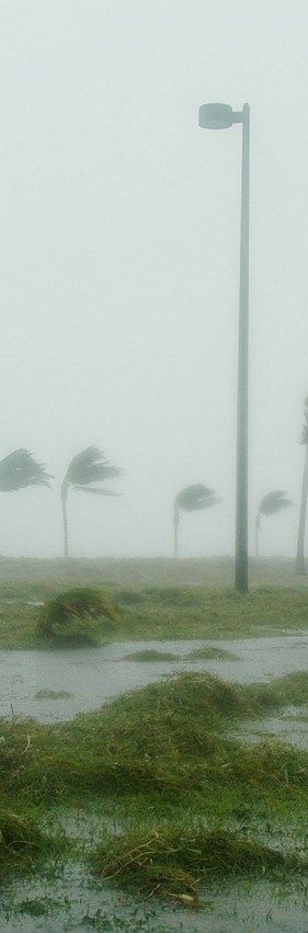 Abiding Guide To Being Chill Through A Hurricane