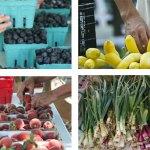 Farmers Market | Old Metairie Garden Club