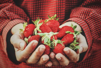 Strawberries in Hand | Old Metairie Garden Club