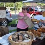 Farmers Arts Metairie Market June 201 | Old Metairie Garden Club