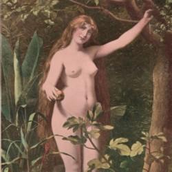 """""""Eve"""" DN-065"""