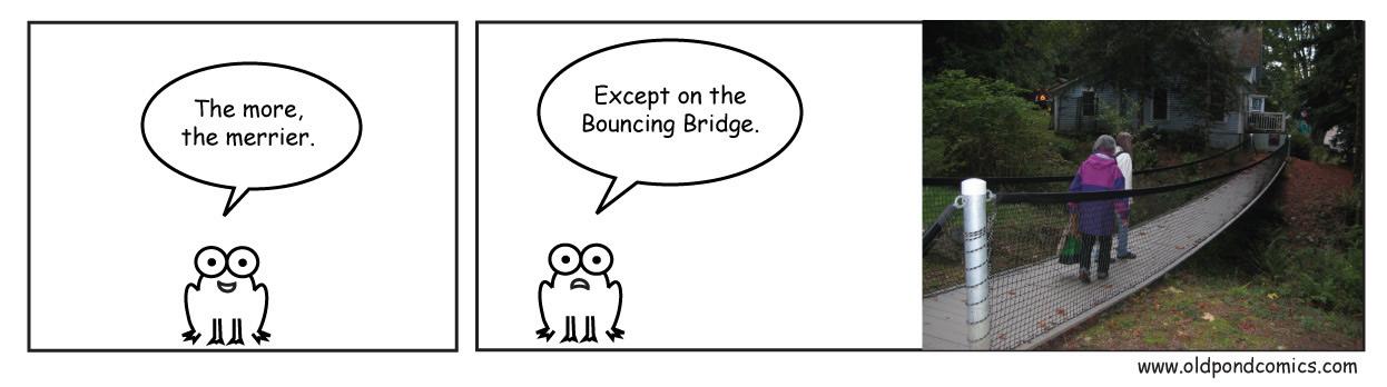 Seabeck boucing bridge