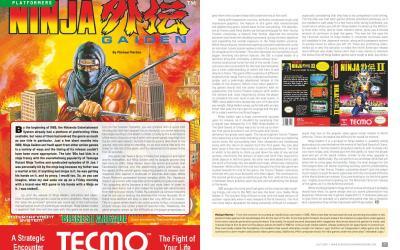 Ninja Gaiden – By Michael Mertes
