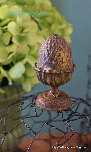 08-Chicken Wire Cloche 016