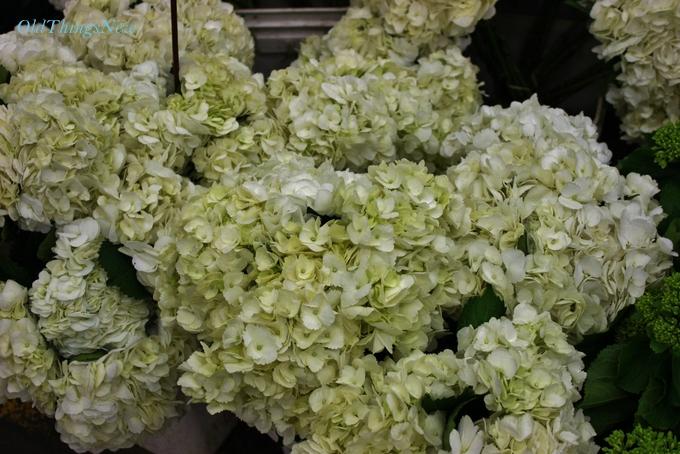 04-Flower District LA 011-001