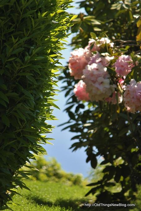 22-Spring Greens 117