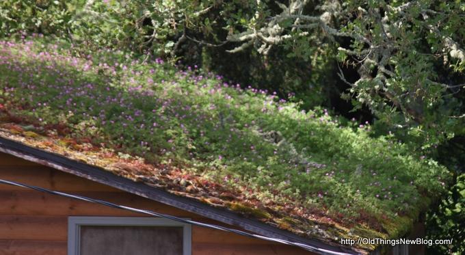 3-Spring Greens & Flowers 022