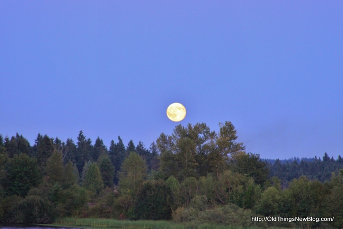 1-Moonrise over Pattison Lake 001-001