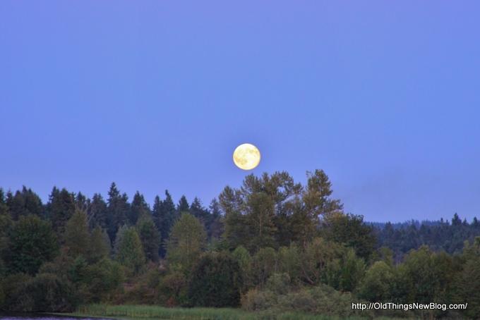 1-Moonrise over Pattison Lake 001-001