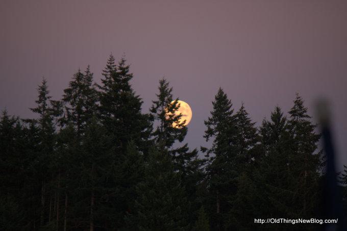 1-Moonrise over Pattison Lake 003