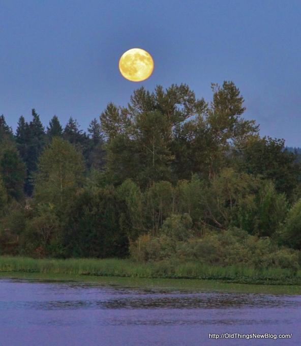 2-Moonrise over Pattison Lake 002-001