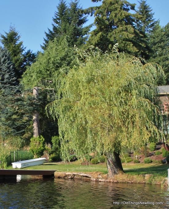 24-Pattison Lake Homes 116