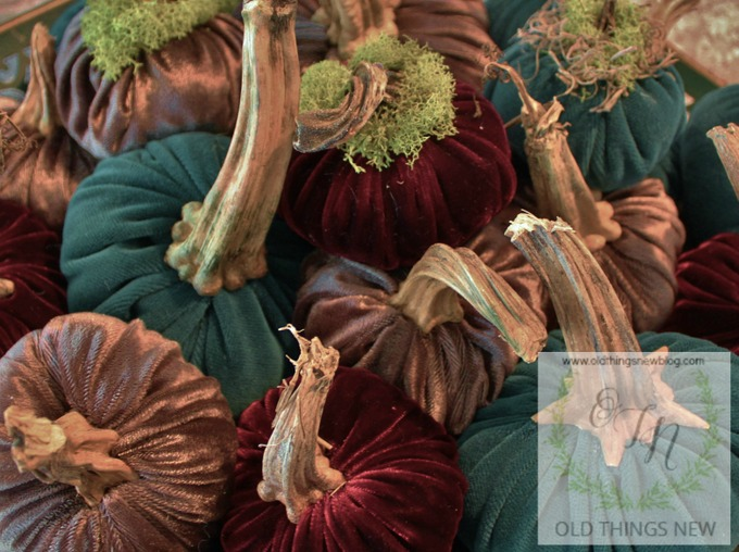 5-Velvet Pumpkins & The Secret Garden Tea Room 001