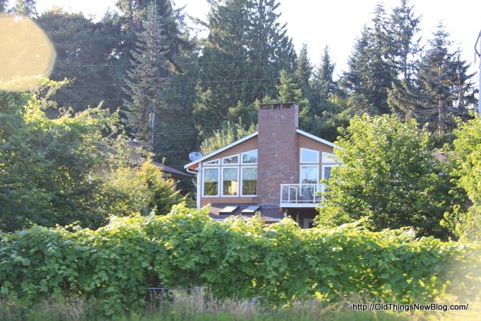 51-Pattison Lake Homes 166